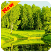 Green Nature Live Wallpaper icon