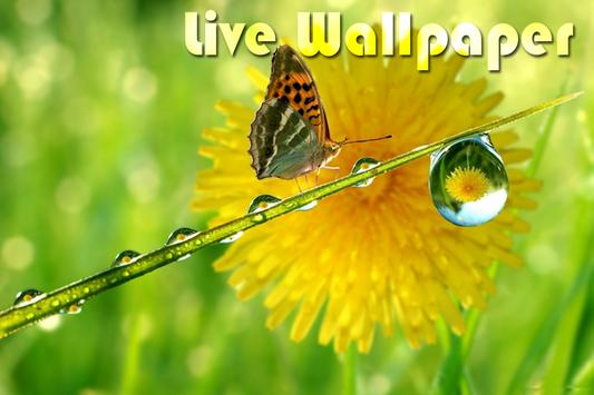 Green Nature Live Wallpaper apk screenshot