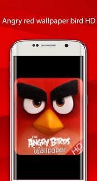 angry red wallpaper bird HD poster