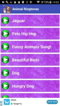 Animal Ringtones - Animal Sounds apk screenshot