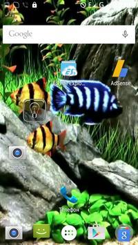 Other Aquarium Video Wallpaper poster