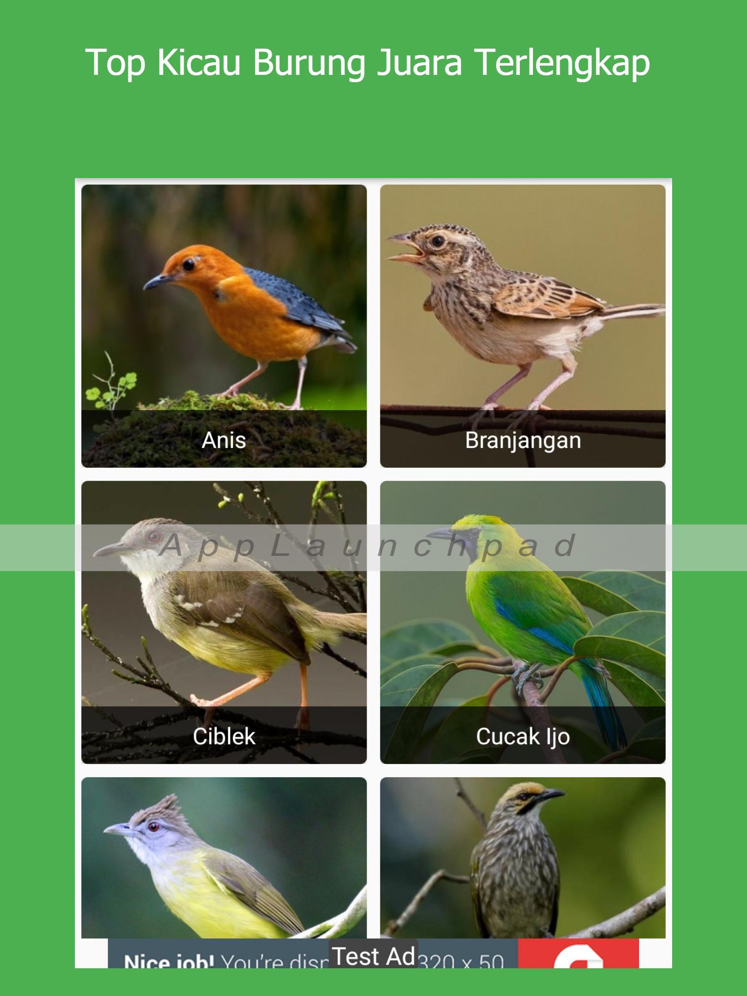 Top Kicau Burung Juara For Android Apk Download