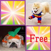 Cute Dog free(Concentration) icon