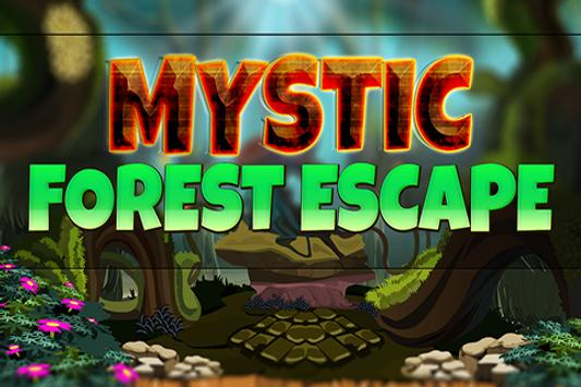 Mystic Forest Escape poster