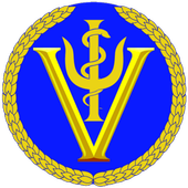 Virtual Health Systems icon
