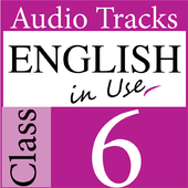 English in Use - class 6 icon