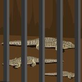 EscapeZoo icon