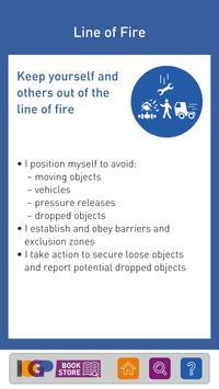 Life-Saving Rules screenshot 6