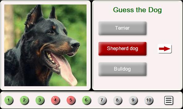 Puzzles and Guess the Breed of Dogs poster