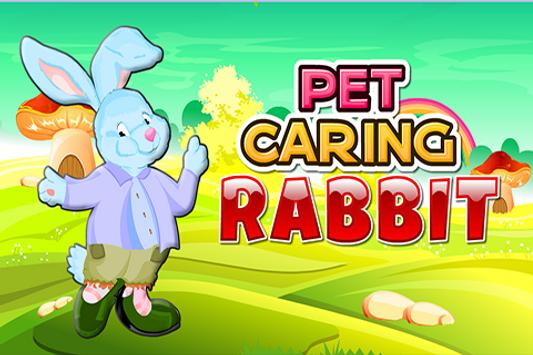 Pet Caring Rabbit poster