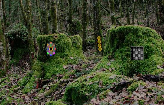 Struggle Forest Escape apk screenshot
