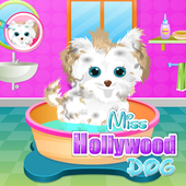 Miss Hollywood Dog Care icon