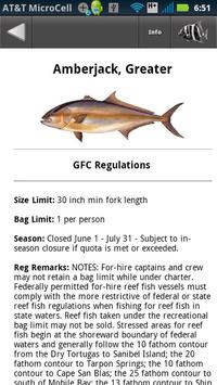 GFC Regulations screenshot 2