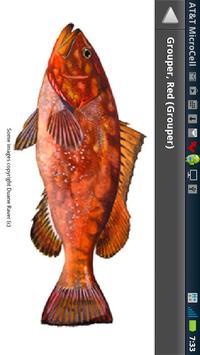 SA Fishing Regulations screenshot 3