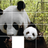 Pandas Sliding Jigsaw icon
