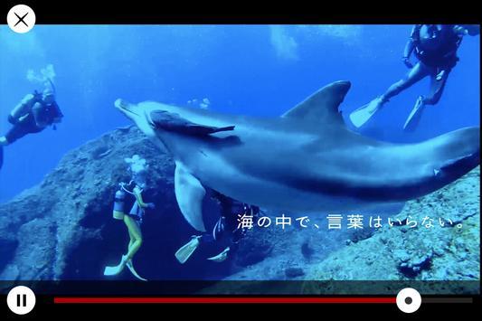IRODORI 小笠原で出会う、9つの色 apk screenshot