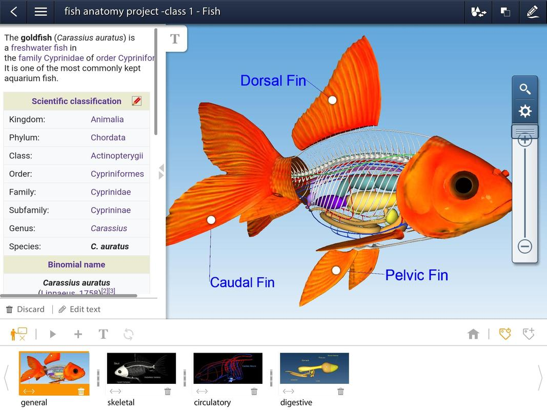 Animalia educalabs for android apk download animalia educalabs screenshot 10 urtaz Images