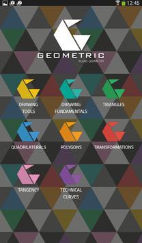 Geometric - Plane Geometry poster