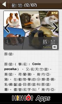 動物猜猜 screenshot 4