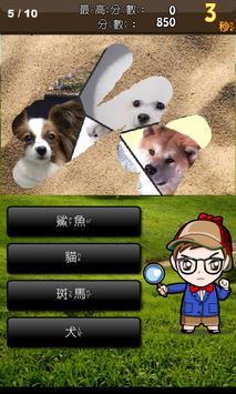 動物猜猜 screenshot 7