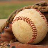 Baseball Word Search FREE icon