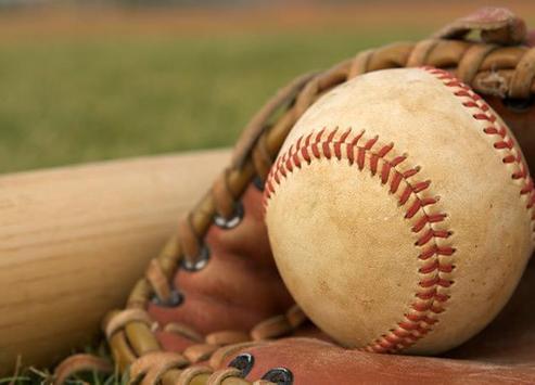 Baseball Word Search FREE apk screenshot