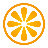 VisitBasis | Retail Audit and Merchandising app icon