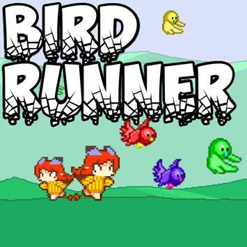 Bird Runner poster
