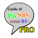 Complete Guide of PicSays Pro Tutorial PhotoEditor APK
