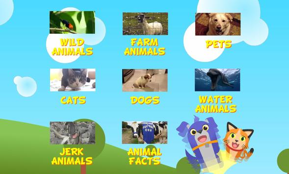 Paw Pals Videos poster