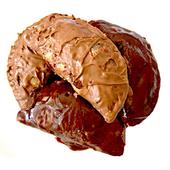 Chocolate Gujiya Holi Recipe icon