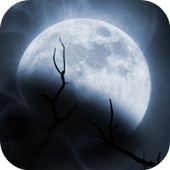 Boo Halloween Edition icon