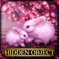 Hidden Object - Sweetheart