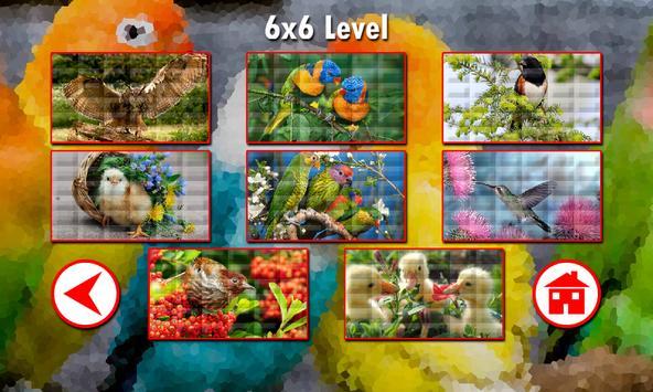 Birds Puzzles apk screenshot