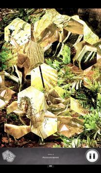 Hidden Scenes - Elementals poster
