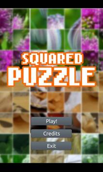 Squared Puzzle poster