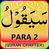 Color coded PARA 2 icon