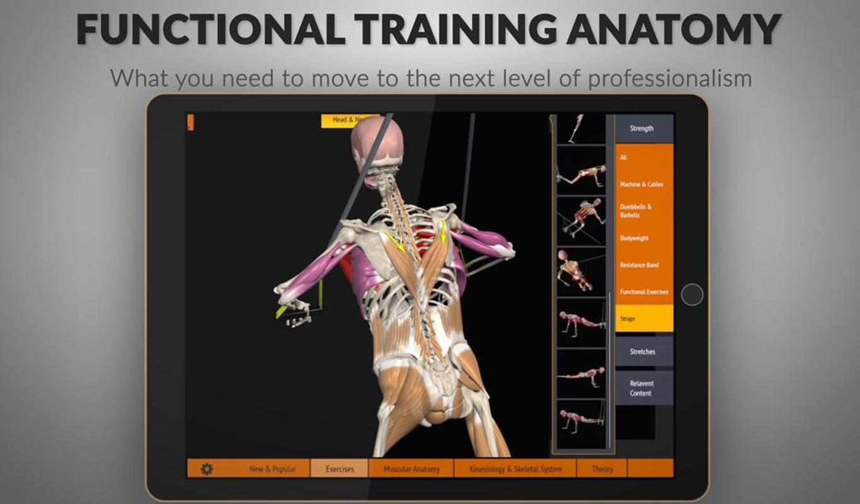 Anatomy Trains Torrent 4989965 Follow4morefo