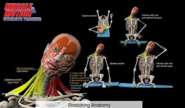 Muscle and Motion - Strength APK Download - Free Health & Fitness ...