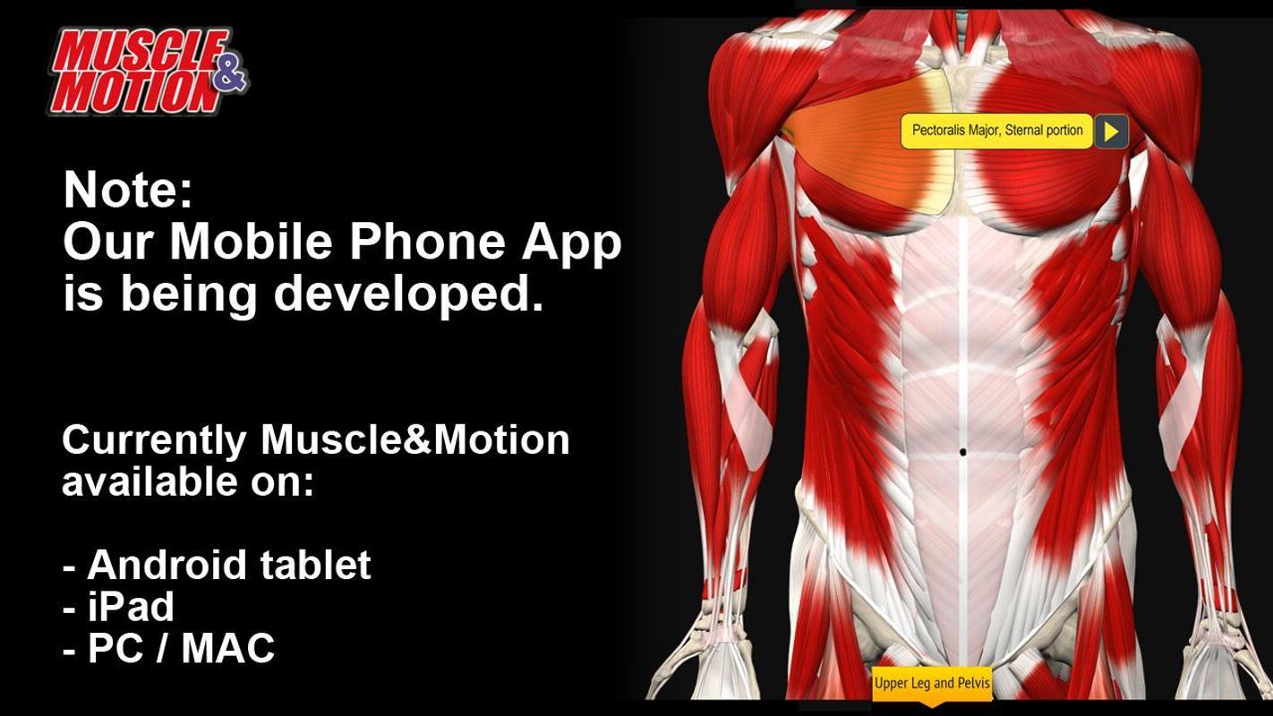 Muscle and Motion Anatomy Descarga APK - Gratis Medicina Aplicación ...