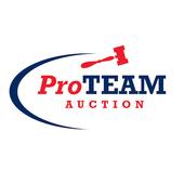 Pro Team Online icon