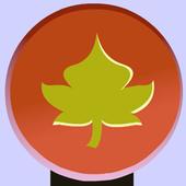 AdventureForClosedBird icon