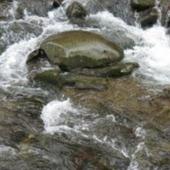 Gatlinburg Stream icon