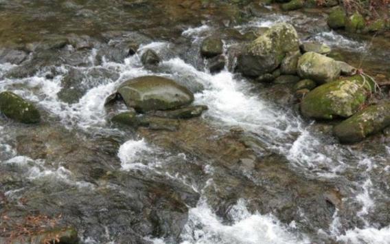Gatlinburg Stream poster