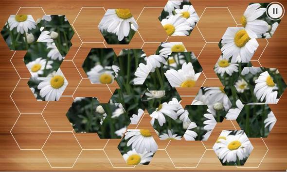 Hexa Puzzle apk screenshot