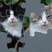 Puzzle with Cute Cats icon