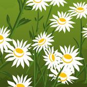 FlowerForestEscape icon