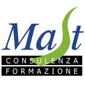 Mast Sicurezza Aziende Bergamo icon