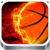 Dünya Basketbol Oyunu icon