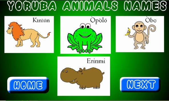 Yoruba Animal Names poster